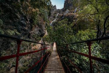 Photo sur Plexiglas Route dans la forêt Spectacular view of a hanging bridge into the forest.