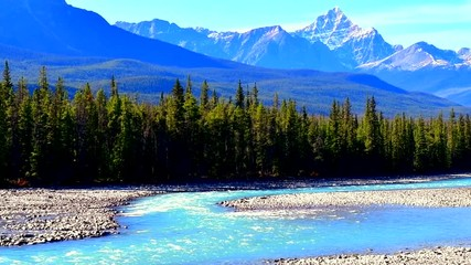 Wall Mural - Athabasca River flowing from the Athabasca Falls in Jasper National Park ,canada