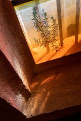 Papiers peints Marron Détail fenêtre