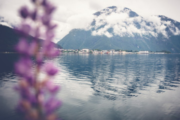Fototapete - Shore of the fjord in Norway, mountains in the clouds. Beautiful Scandinavian landscape