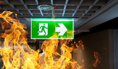 Green fire escape sign hang on the ceiling in the office. Wall mural