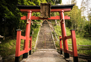 Torii gate in shito shrine