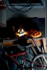 Aluminium Prints Bicycle halloween october holiday orange pumpkin and candles