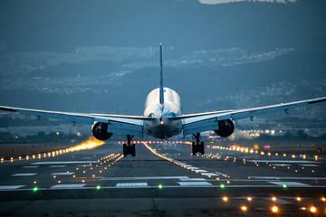 Tuinposter 大阪空港に着陸する飛行機