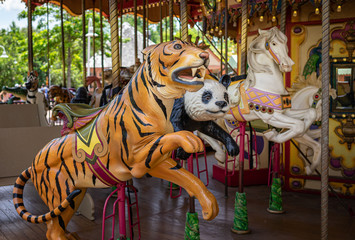 Carousel Animals