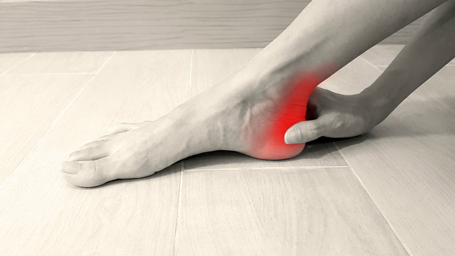 Foot anatomy with red highlight on painful area.  Ankle pain may cause from muscle strain, Achilles tendinitis, ligament sprain, arthritis, bone fracture or bursitis disease. Medical symptom concept