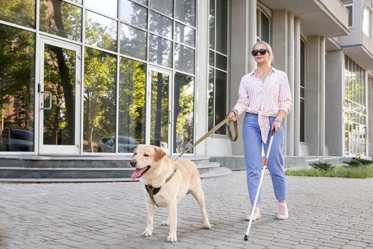 Young blind woman with guide dog outdoors