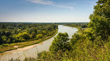 Fototapeta Dolina rzeki Bug  obraz