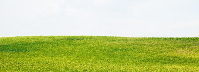 Papiers peints Blanc windows paysage