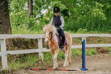 Young playful Caucasian girl with helmet and protective vest on riding adorable pony horse at...