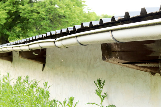 rain gutter on the side of a wall with tree and plants in the background and foreground
