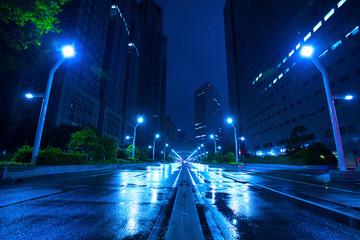雨の夜の新宿の道路 Wall mural