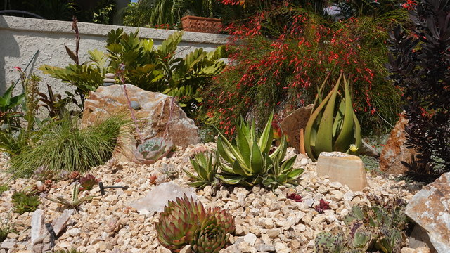 Well done Xeriscape