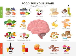 Healthy food and bad food for brains infographic elements in detailed flat design isolated on white background. Big collection of foods icons around the Brain illustration, medical infographic theme.