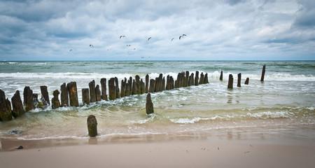 falochron morze mewy chmury