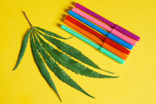 Stimulation of creativity and imagination. The green branch of hemp cannabis lies on a bright yellow background next to multi-colored markers. Psychotropic substances and medicine