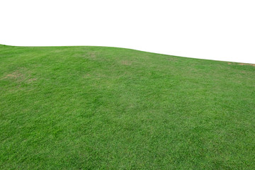 Green hill of grass field isolated on white background. Fototapete