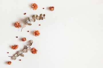 Foto auf Leinwand Blumen Autumn composition. Frame made of dried flowers, eucalyptus leaves, berries on gray background. Autumn, fall, thanksgiving day concept. Flat lay, top view, copy space