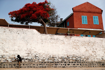 A boy is pictured at Goree Island off the coast of Dakar