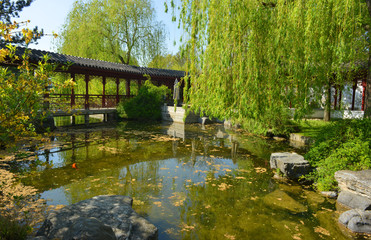 Berlin Germany beautiful chinese garden with path and pond with gold fish