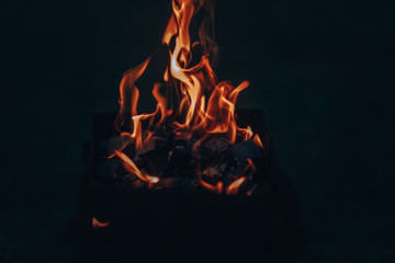 Bright bonfire. The breeding of fire. Tongues of flame. Beautiful background with bonfire and fire.