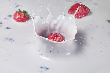 Acrylic Prints In the ice strawberry falling into yogurt in super slow motion with splash