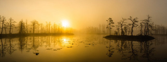 Canvas Prints Honey Landscape of misty sunset over the swamp. Reflection in water.