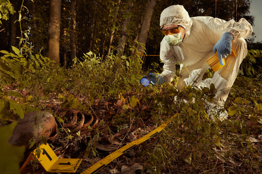Older human remains found in forest - collecting of skeleton by police