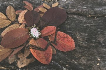 small vintage pendant lying on autumn leaves
