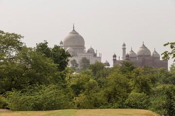 View of the Taj Mahal from Taj Nature Walk Park at Agra, Uttar Pradesh, India.
