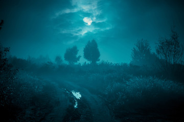 Night mysterious landscape in cold tones - silhouettes of the trees under the full moon through the clouds on dramatic night sky. Wall mural