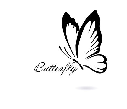Logo abstract butterfly. Vector illustration