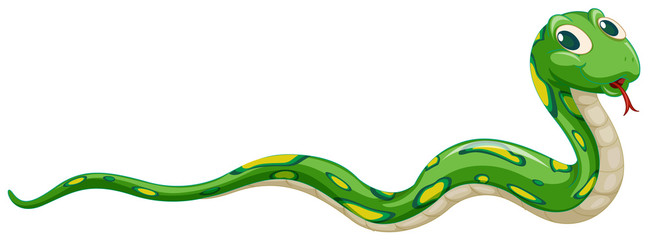 Printed kitchen splashbacks Kids Green snake on white background