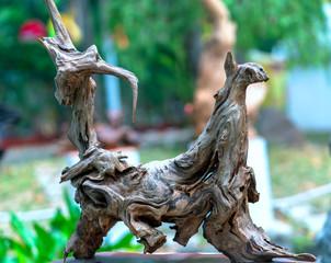 Fototapeta Dry driftwood of coniferous tree, old weathered relief wood obraz