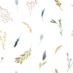 Seamless pattern of watercolor dried flowers, isolated on white background.