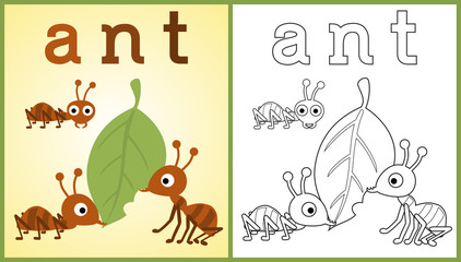 vector cartoon of working ants, coloring book or page