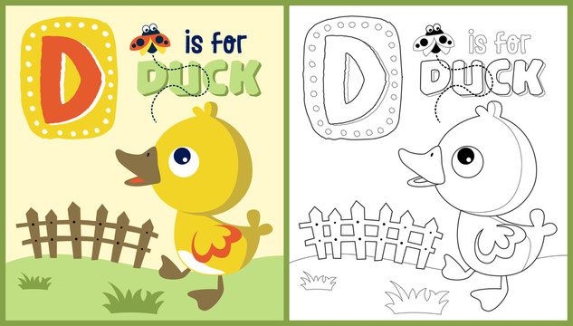 vector cartoon of duckling with a ladybug, coloring book or page