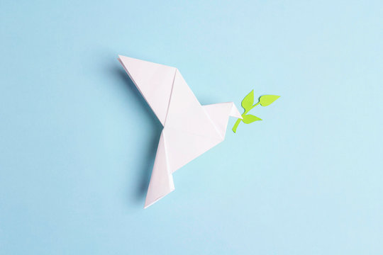 Paper origami dove of peace with olive branch on a blue background.