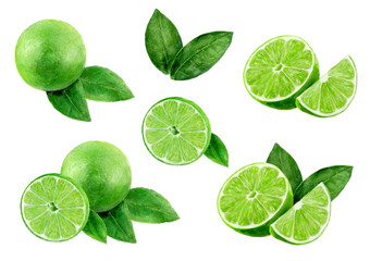 Lime set watercolor illustration isolated on white background