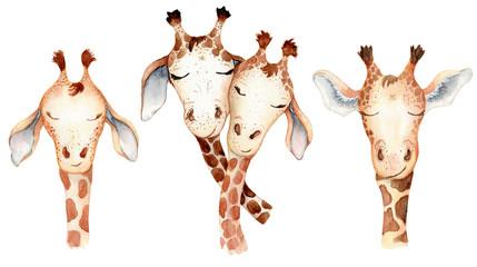 Cute giraffes couple cartoon watercolor illustration animal set