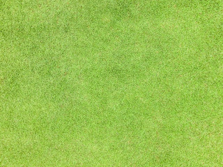 Tuinposter Gras Natural grass texture pattern background golf course turf from top view with authentic grassy lawn for environmental backdrop in yellow green