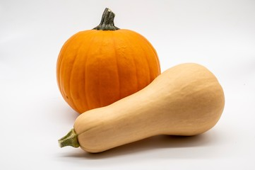 butternut squash and pumpkin isolated on white background