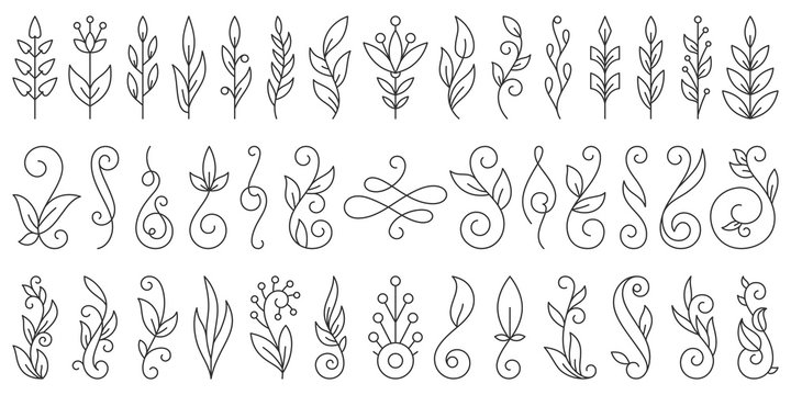 Floral Branch ornamebt simple line icon vector set