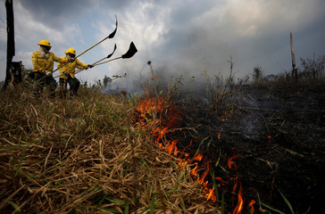 Brazilian Institute for the Environment and Renewable Natural Resources (IBAMA) fire brigade members attempt to control hot points during a fire in Apui