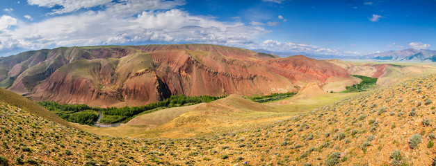 Wall Mural - Panoramic view, colorful mountain slopes. Dry Mongolian landscapes of Altai.