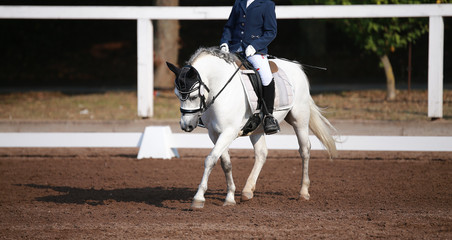 Horse (dressage horse) with rider on a horse show during a dressage competition..