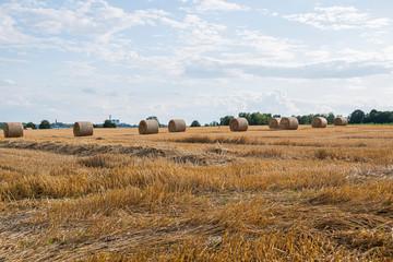 Polish landscape with hay bales. Piekary  Slaskie, Silesia. Poland.