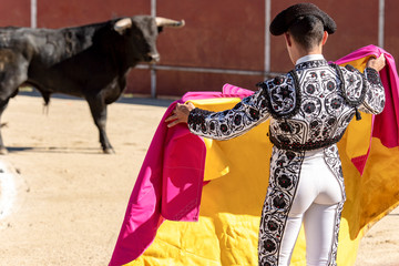 Close-up of a bullfighter seen from behind bullfighting a bull in the Plaza of Spain