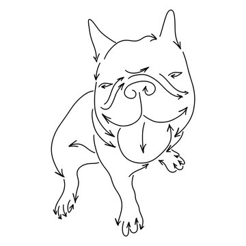 bulldog made from arrows vector illustration sketch doodle hand drawn with black lines isolated on white background