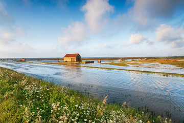Wall Mural - Hight tides flooding the harbour at Thornham